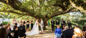 bianca paliaga weddings